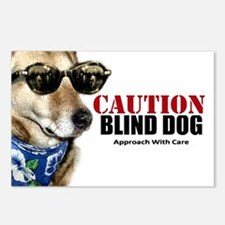 Caution Blind Dog Approach With Care Postcards (Pa