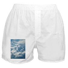 Skylight Boxer Shorts