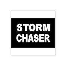 stormchaser Sticker