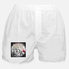RightOn Biladi Boxer Shorts