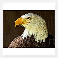 "Bald Eagle Square Car Magnet 3"" x 3"""