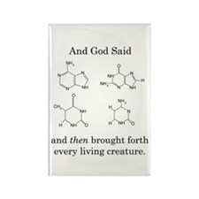 God Created DNA Rectangle Magnet (10 pack)