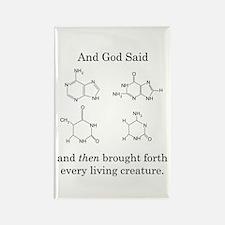 God Created DNA Rectangle Magnet (10 pack)