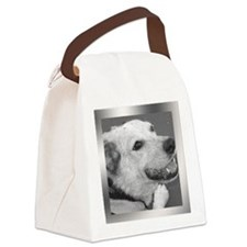 Your Photo in a Silver Frame Canvas Lunch Bag