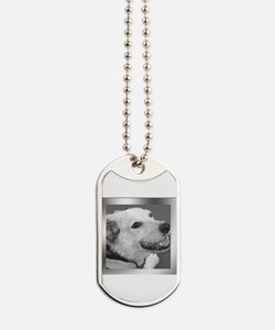Your Photo in a Silver Frame Dog Tags
