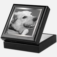 Your Photo in a Silver Frame Keepsake Box