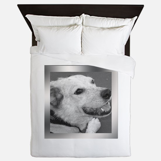 Your Photo in a Silver Frame Queen Duvet