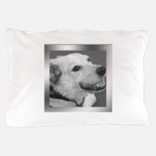 Your Photo in a Silver Frame Pillow Case