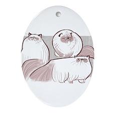 himalayan cat Ornament (Oval)