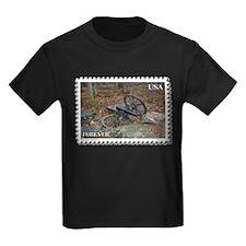 Stones River - Murfreesboro T-Shirt