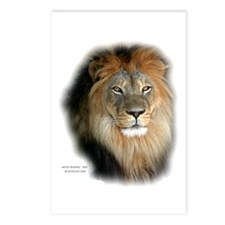 Cute Lion king Postcards (Package of 8)