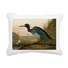 Audubon Blue Crane Heron from Birds of America Rec
