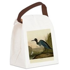 Audubon Blue Crane Heron from Birds of America Can