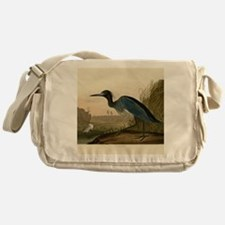 Audubon Blue Crane Heron from Birds of America Mes