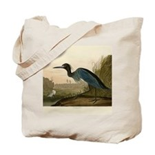 Audubon Blue Crane Heron from Birds of America Tot