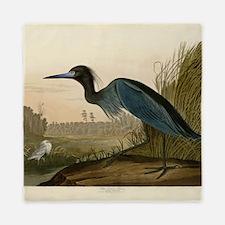 Audubon Blue Crane Heron from Birds of America Que