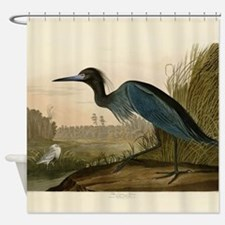 Audubon Blue Crane Heron from Birds of America Sho