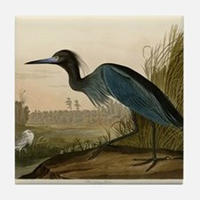 Audubon Blue Crane Heron from Birds of America Til