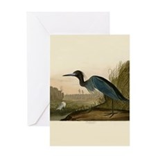 Audubon Blue Crane Heron from Birds of America Gre