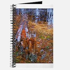 Unique Aloramyst Journal