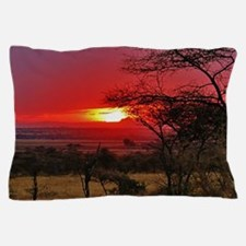 Tanzania 001 Pillow Case