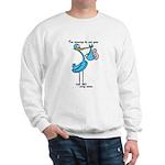 Stork Visit Boy Sweatshirt