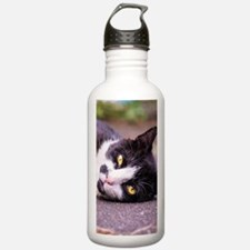 Black and white cat Water Bottle
