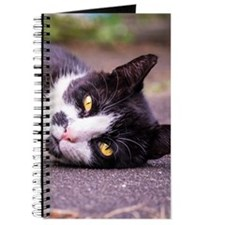 Black and white cat Journal