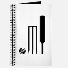 Cricket ball bat stumps Journal