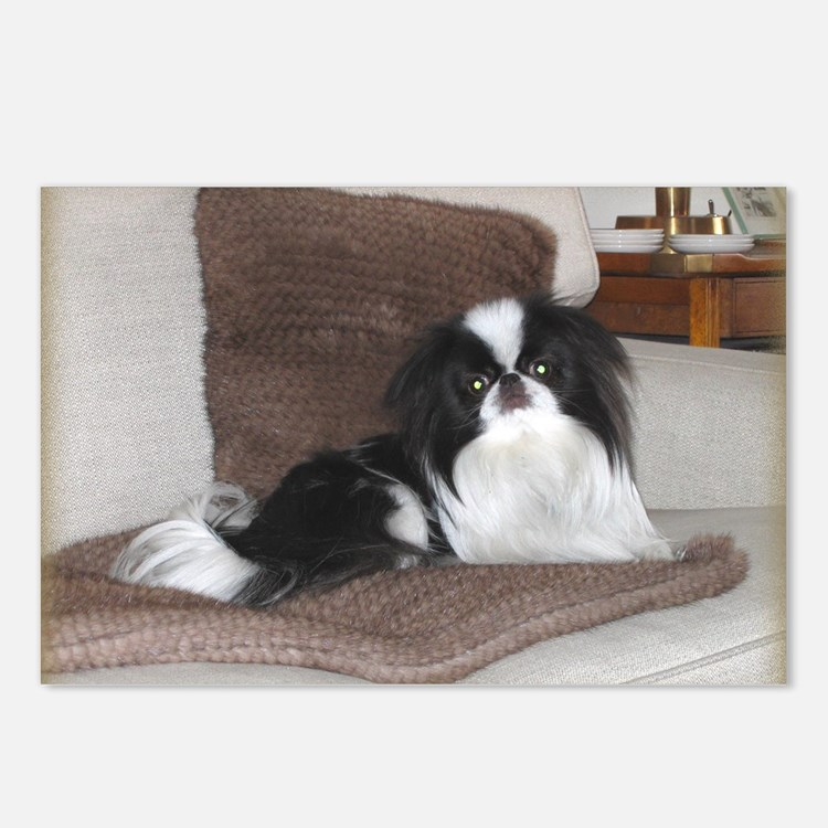 Deluxe Japanese Chin Darling Postcards (8-Pack)