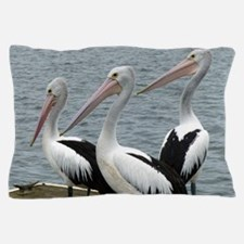 Three Gorgeous Pelicans Pillow Case