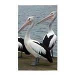Three Gorgeous Pelicans 3'x5' Area Rug