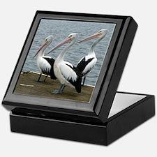 Three Gorgeous Pelicans Keepsake Box