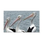 Three Gorgeous Pelicans 20x12 Wall Decal