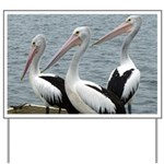 Three Gorgeous Pelicans Yard Sign