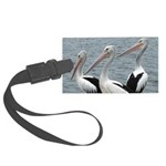 Three Gorgeous Pelicans Large Luggage Tag