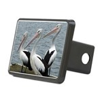 Three Gorgeous Pelicans Rectangular Hitch Cover