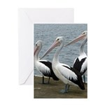 Three Gorgeous Pelicans Greeting Card