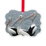 Three Gorgeous Pelicans Picture Ornament