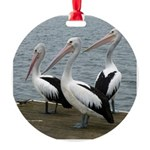 Three Gorgeous Pelicans Round Ornament