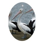 Three Gorgeous Pelicans Ornament (Oval)