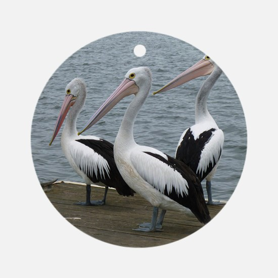 Three Gorgeous Pelicans Ornament (Round)