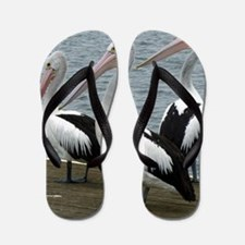 Three Gorgeous Pelicans Flip Flops