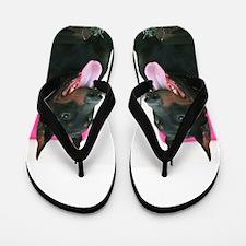 Doberman Pinscher dog Flip Flops