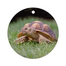 Gummer Looking Left Ornament (Round)