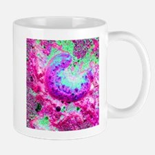 magneta green sea cucumber graphic Mugs