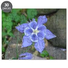 Unique Green purple Puzzle