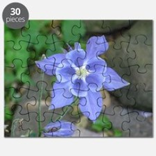 Unique Columbine Puzzle
