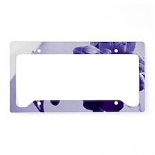 Orchid In Violet License Plate Holder