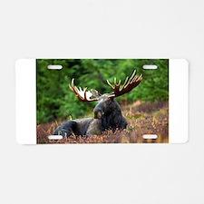 Majestic Moose Aluminum License Plate